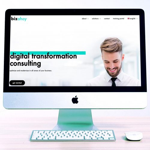 new professional WordPress website